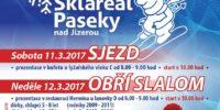 20170312-Prdecka-lyze-plakat